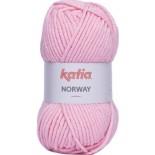 Norway 15 Rosa