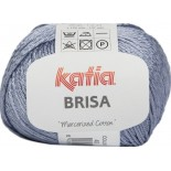 BRISA 45