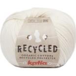 Recycled 101 - Crudo