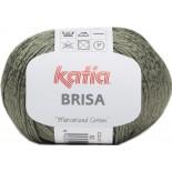 BRISA 62 - Caqui