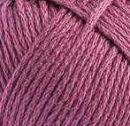 28 - Purpura